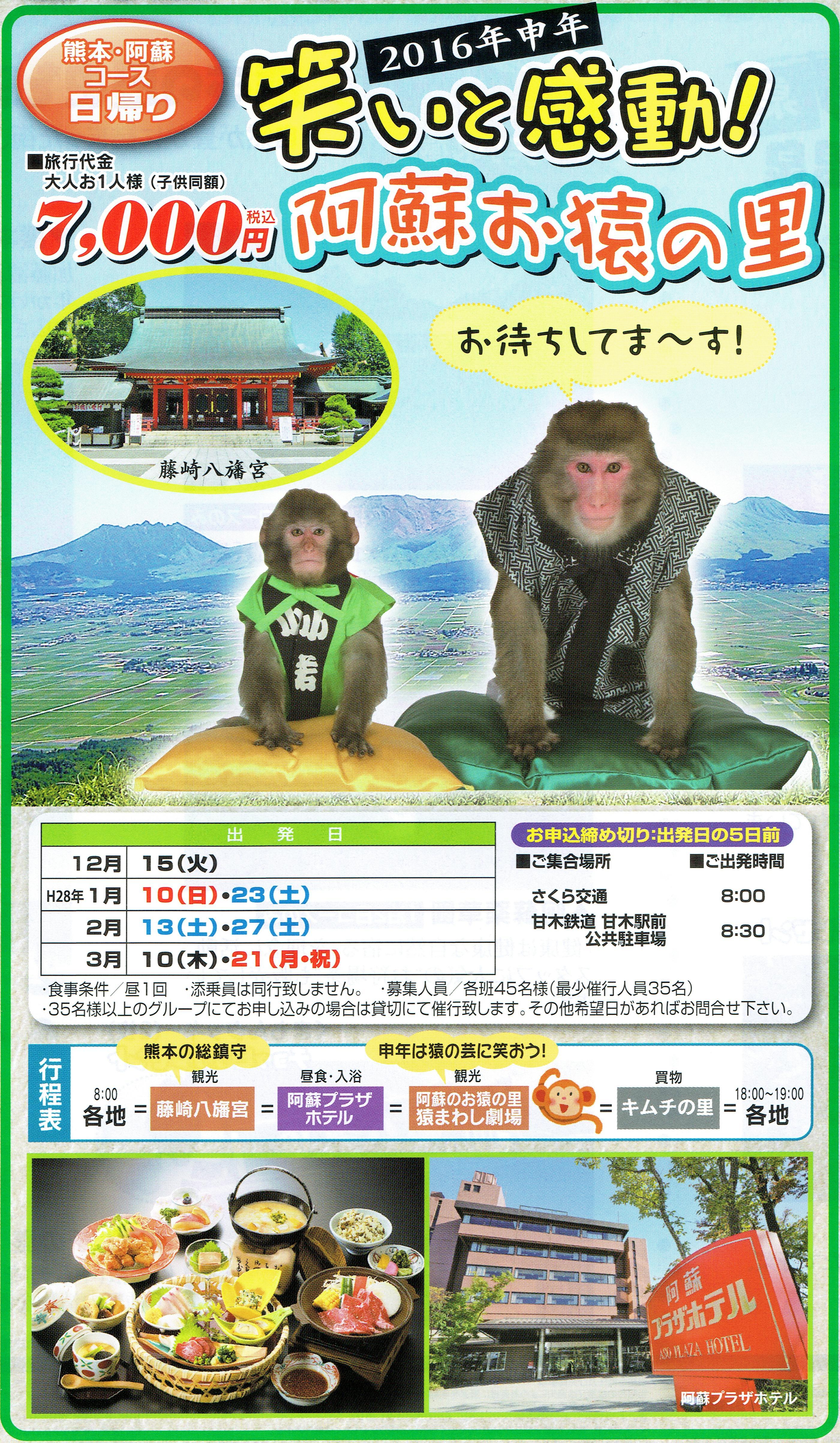 阿蘇お猿の里